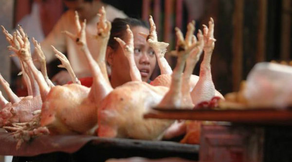 Pedagang ayam potong.[IST]