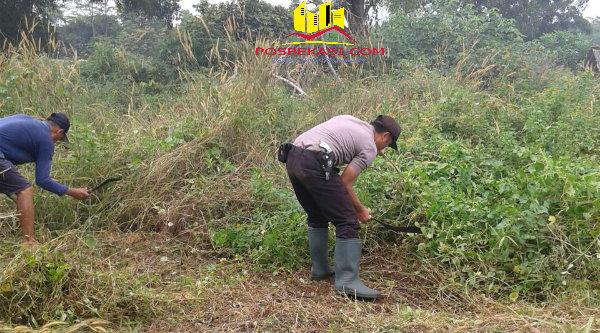 Mengenakan seragam, Bripka Nursalim tampak membabat semak rumput membantu warga membersihkan lingkungan pemakaman yang akan ramai diziarahi oleh warga memasuki bulan Ramadhan 1437 H mendatang.[IMA]