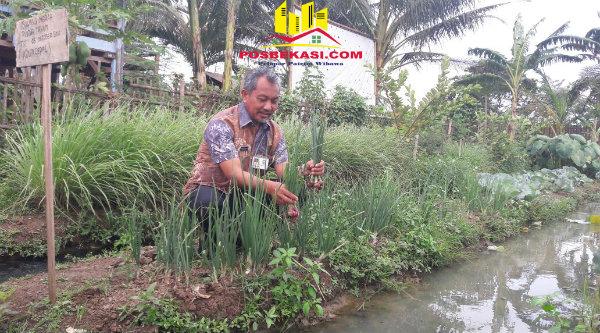 Wakil Walikota Bekasi H Ahmad Syaikhu saat berkunjung ke Kabupaten Karawang guna menerapkan pertanian perkotaan, Kamis 29 Desember 2016.[ISH]