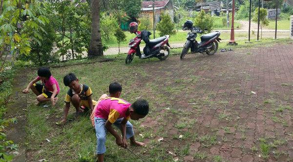 Para bocah yang kerap bermain di halaman Polsub Sektor Griya Pratama Mas turut membantu polisi dalam gerakan Sabtu bersih, smabil bermain mereka mencabuti rumput.[MIN]